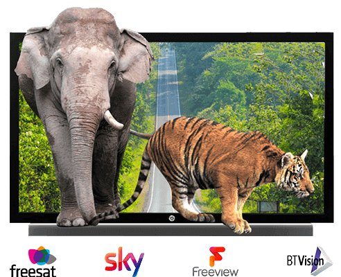 tv-freeview-sky-freesat-bt-vision-logos